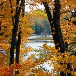 fall-lake-view